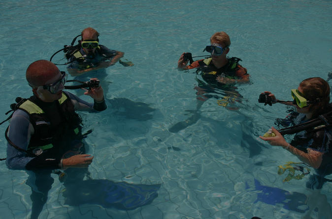 Playa Del Carmen Learn to Scuba Dive- PADI Open Water Course Mexico, North America