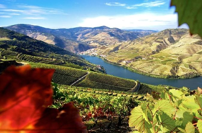 Authentic douro wine tour including lunch in porto 339845