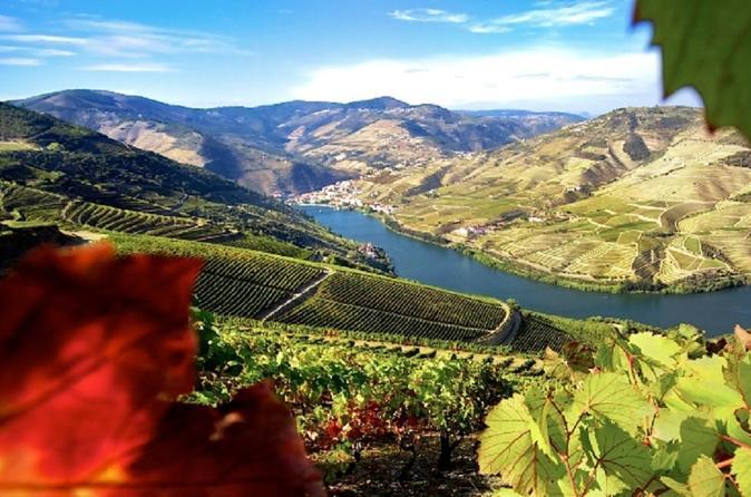 Excursão vinícola ao autêntico Douro incluindo almoço