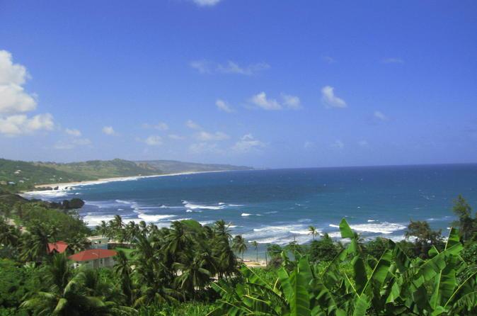 Barbados Island Tour In Barbados Central America - Barbados tours