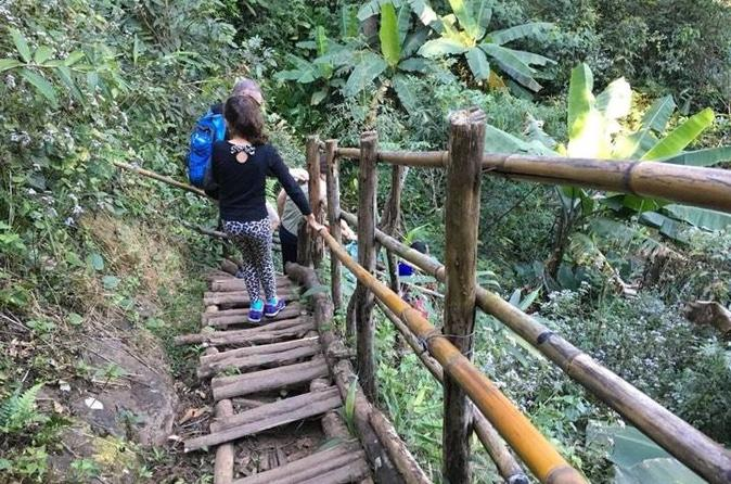 Doi Inthanon Private Tour with Trek, Lunch from Chiang Mai