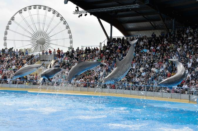 Family Tour From Cannes  Amusement Parks And Attractions