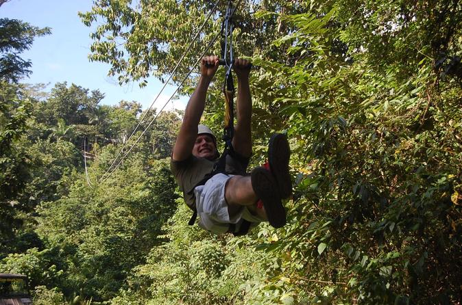 Zipline Adventure from Montego Bay