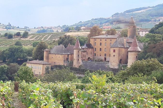 Beaujolais South Gourmet Wine Tour with Tasting from Lyon