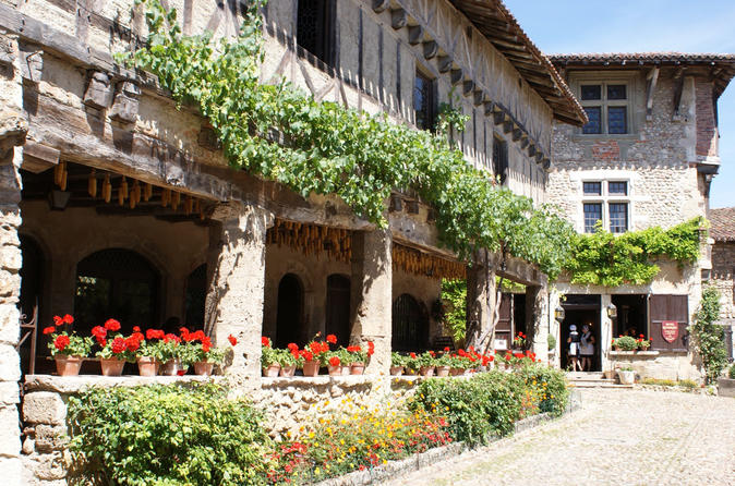 Full-Day Private Beaujolais and Dombes Wine Tasting Tour from Lyon