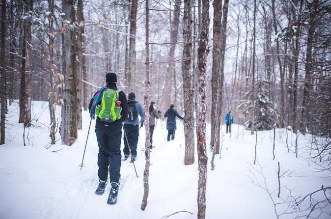 Quebec ski shoeing excursion in quebec city 396125