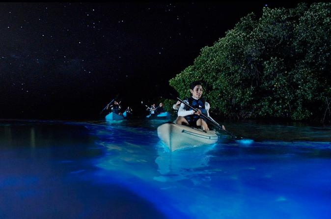 Bioluminescence Night Kayaking Tour
