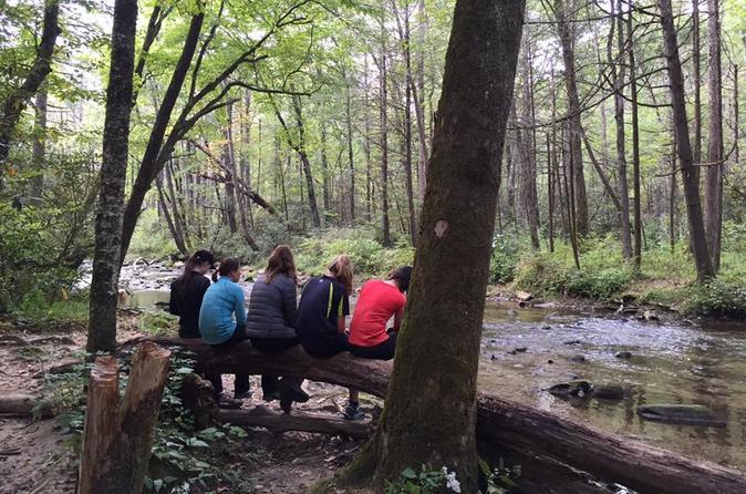 Explore a Simpler Time Smoky Mountain Tour