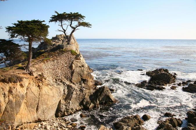 Viagem de um dia para Monterey, Carmel e 17-Mile Drive saindo de San Francisco
