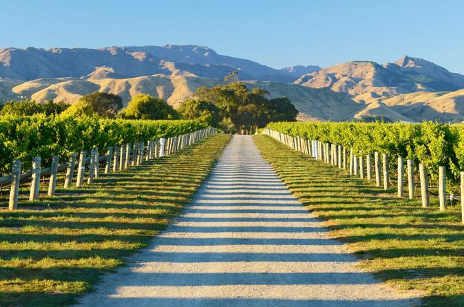 Full day marlborough wine tour including wine tasting in blenheim 277708