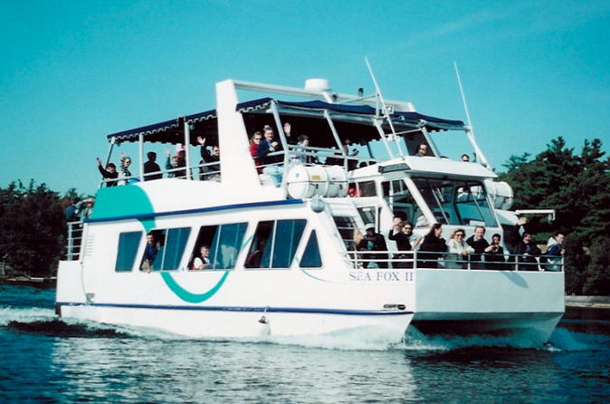 90 minute thousand islands sightseeing cruise in brockville 294722