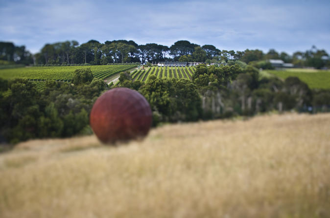 Estate to Plate: Montalto Vineyard Gourmet Lunch and Wine Tasting Tour