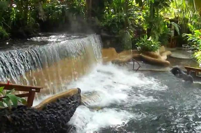Private Tour To Arenal Volcano And Tabacon Hot Springs San José