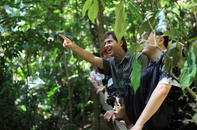 Rain Forest Nature Walk Expedition And Banana Plantation From Limon