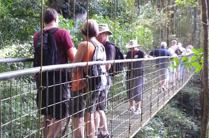 Rainforest skywalk and tarcoles river eco cruise tour in puntarenas 294555