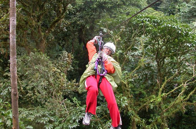 Zipline and rainforest aerial tram tour from puntarenas in puntarenas 294550