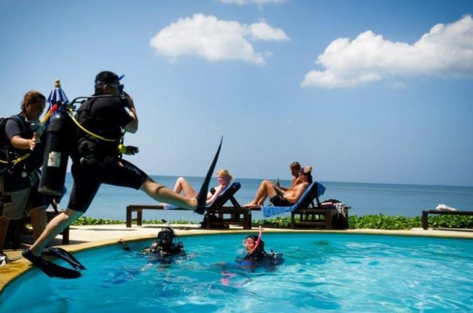 3 day padi open water diver course in ko lanta in ko lanta yai 278292