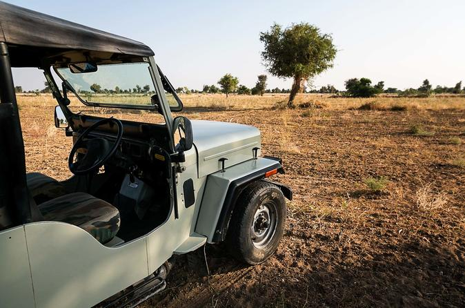 Experience Jodhpur Village Visits In Jeep Safari in a Half Day Sightseeing Trip
