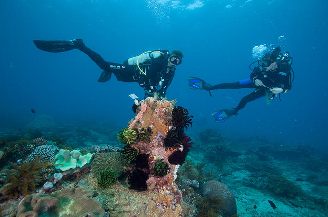 PADI Discover Scuba Diving for Beginners in Padangbai