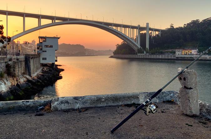 Excursão de bicicleta de 3 horas pelo Porto