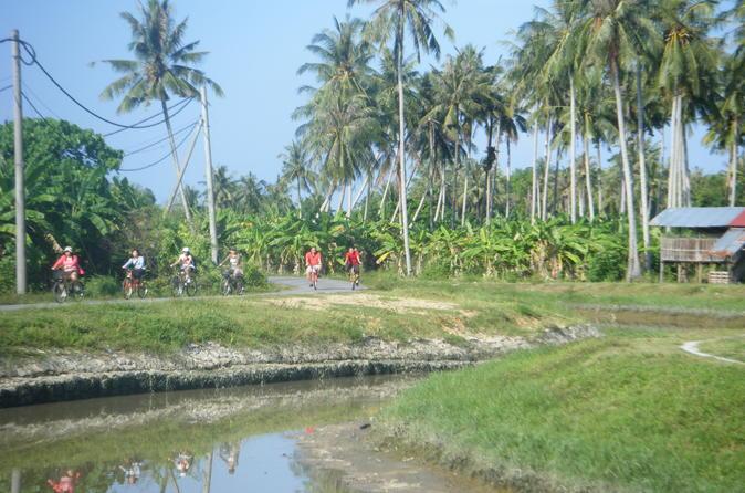 Half-Day Penang Countryside Cycling Tour - Penang Hill