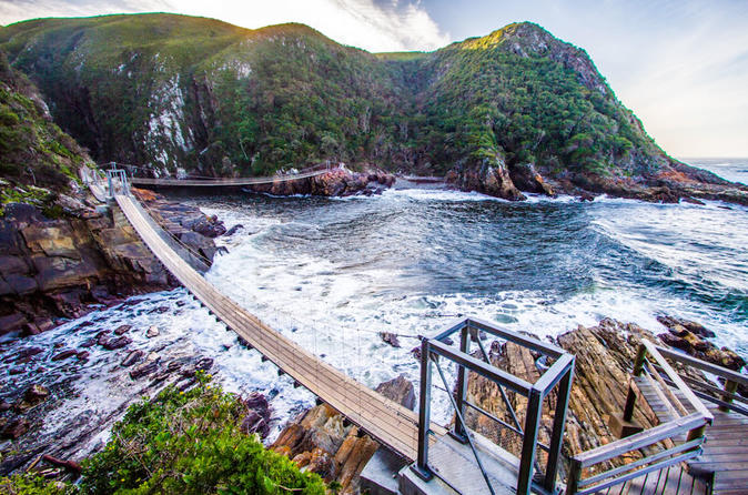 Tsitsikamma National Park Day Tour | Knysna, South Africa Activities -  Lonely Planet