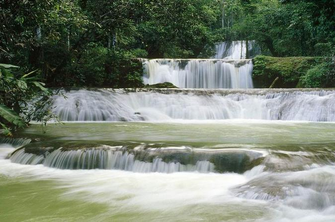 Full-Day All-Inclusive Tour of Jamaica's South Coast