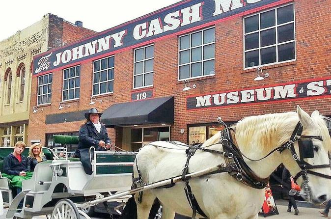 Private 45 minute downtown nashville horse and carriage tour in nashville 355568