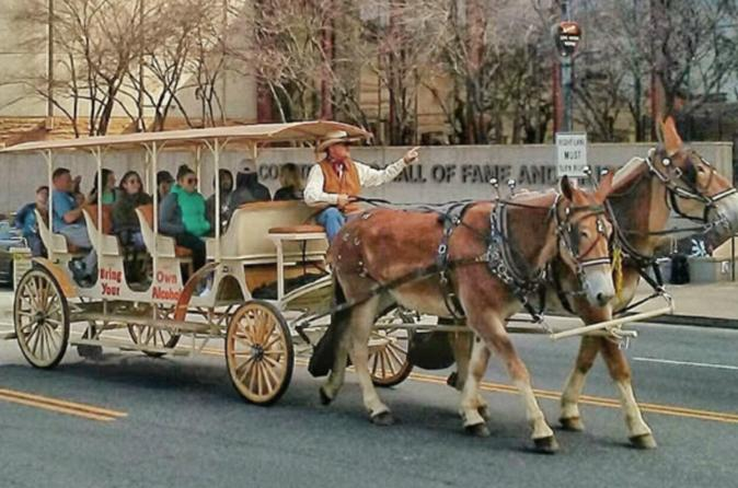 Private Tour: BYOB Horse Carriage Pub Crawl