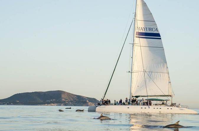Catamaran Cruise From Cala Ratjada With Lunch And Drinks - Palma De Mallorca