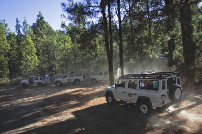 Jeep safari in tenerife teide masca route in playa de la am ricas 353461