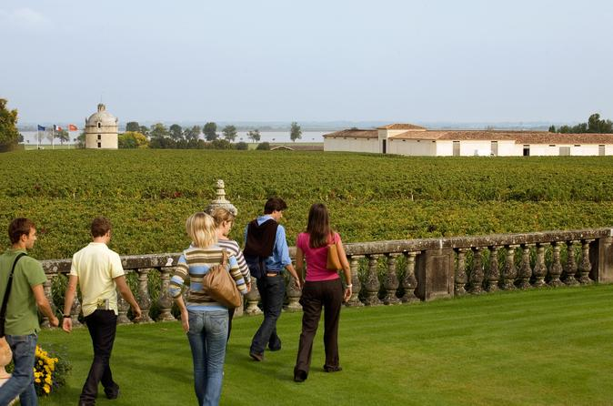 Bordeaux vineyards wine tasting half day trip in bordeaux 49163
