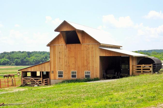 Visita à Comunidade Amish, Jornada de Vinhos e Caminhada pela Trilha John Muir