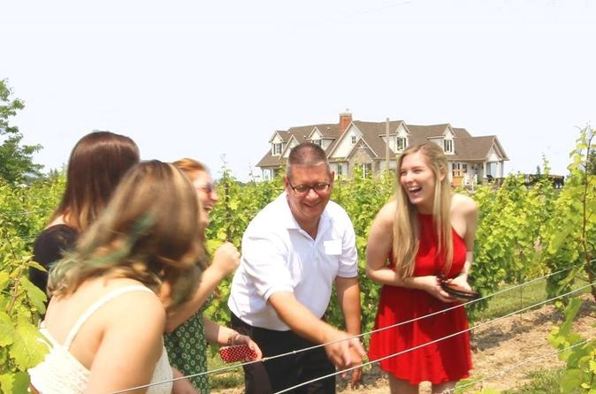 Wine, Cider And Beer Tasting And Pairing Afternoon Tour - Niagara Falls
