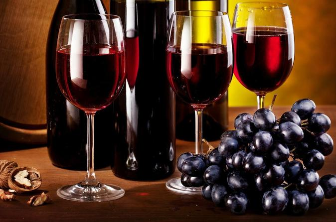 Navarra wineries tour with optional lunch from pamplona in pamplona 298837