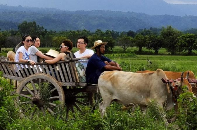 Full-Day Local Countryside Experience from Bangkok""