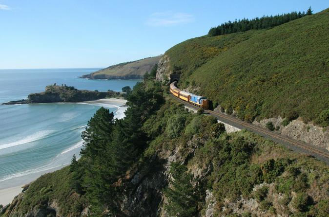Dunedin Shore Excursion: Coastal Train and Olveston House