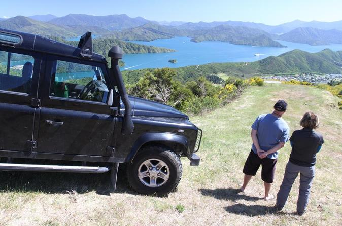 Picton Shore Excursion: Gondola Hill 4WD Tour