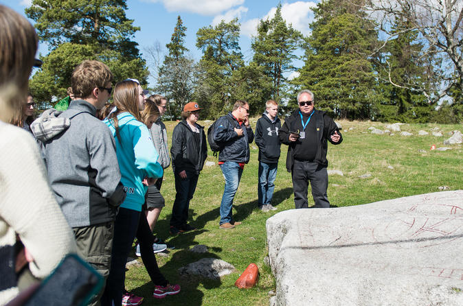 Stockholm Shore Excursion: Half-Day Viking History Tour from Stockholm