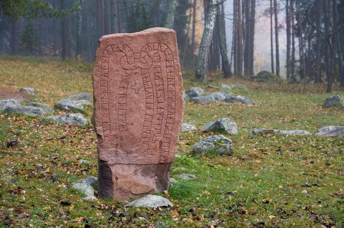 Viagem de um dia sobre os Vikings saindo de Estocolmo, incluindo Uppsala