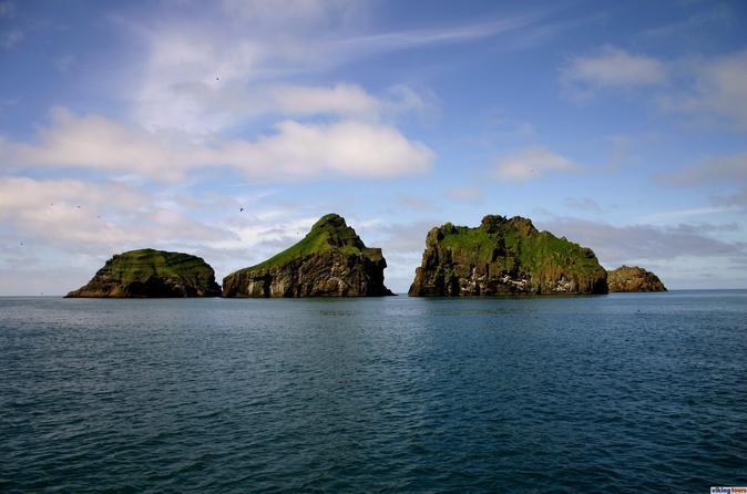 Westman Islands Heimaey Circle Boat tour