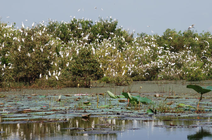 Mekong Delta Tours 3days - CaiBe Vinh Long ChauDoc CanTho