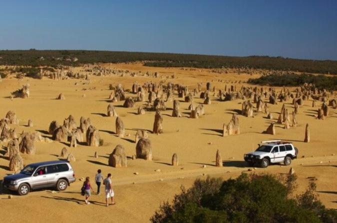 1-Day Pinnacles And Yanchep Tour From Perth Including Fish And Chips Lunch
