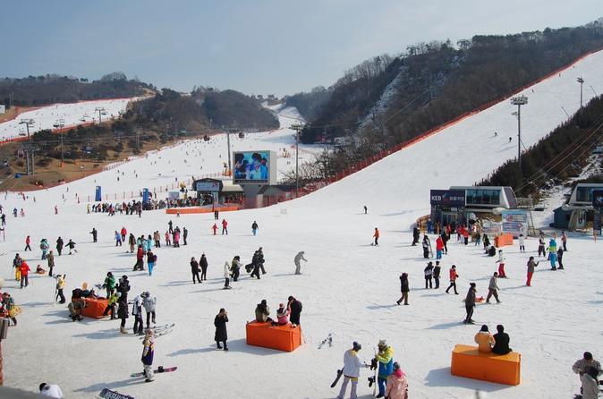 Full-Day Ski Package with Transportation from Seoul""
