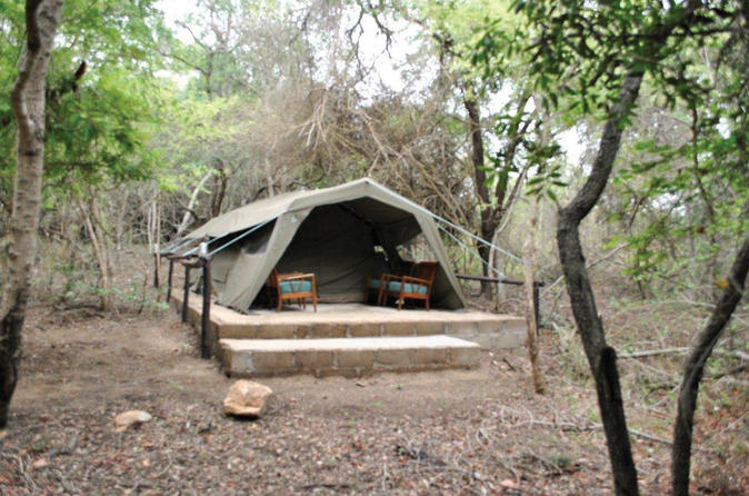 4 Day Kruger Tented Safari - Johannesburg