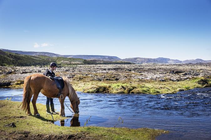 Icelandic horseback riding tour from reykjavik in reykjavik 483560