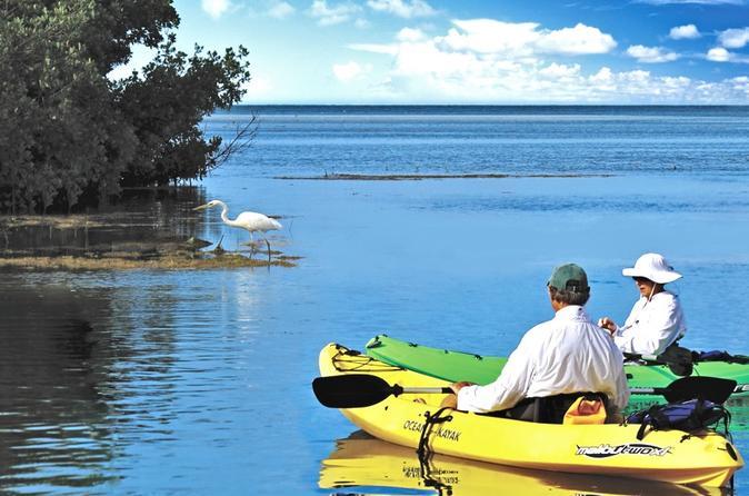 Geiger Key Backcountry Kayak Eco-Tour