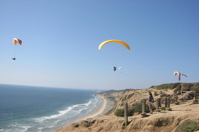 San Diego Beach and La Jolla Torrey Pine Tour