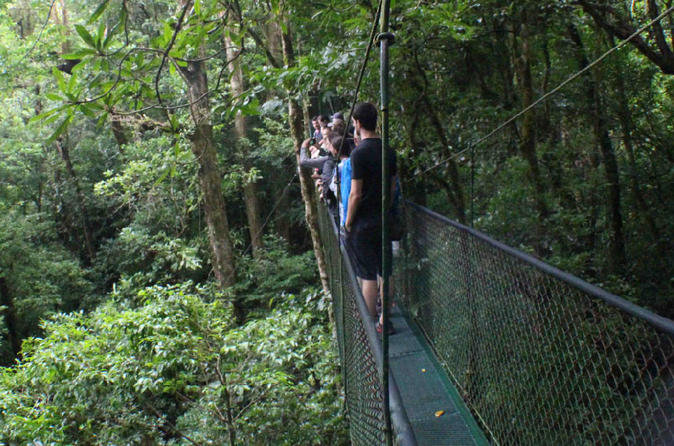 Hanging bridges tour at 100 aventurapark in monteverde 404251