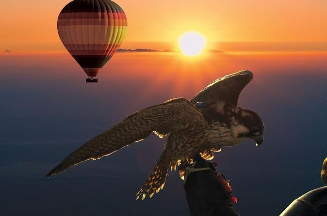 Dubai hot air balloon flight including gourmet breakfast and falconry in dubai 422548